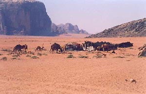 Wadi Rum Bedouin Encampment (photo by Carmen Clark)